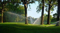 Irrigation Management, Audits and Repair