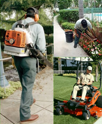 Landscape Grounds Maintenance